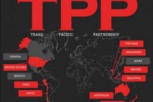 Rà soát các hiệp định thương mại quan trọng - Kỳ II