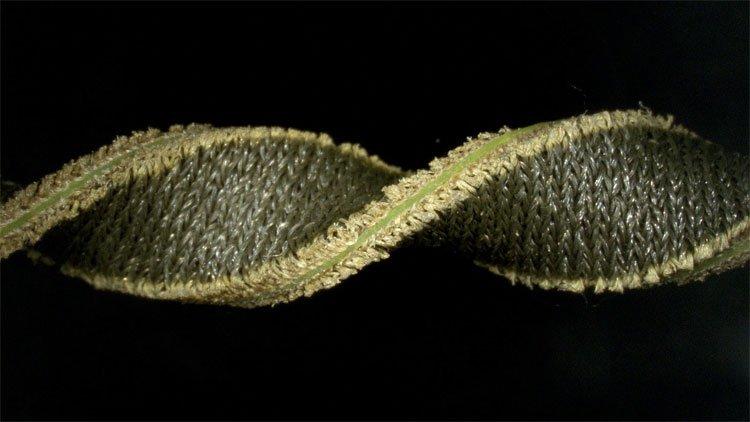 Tìm ra vật liệu biến vải thành thiết bị theo dõi sức khỏe