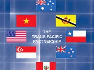 Doanh nghiệp Việt Nam với Hiệp định TPP